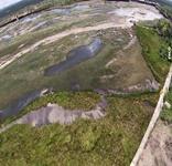 Veja imagens aéreas e terrestres do lago do Parque Belvedere após esvaziamento