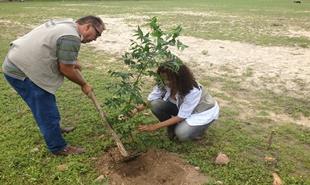 Crianças participam do Projeto Replantar com árvores nativas da região em Delmiro Gouveia