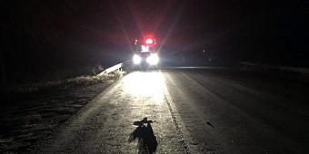Agricultor morre em mais um acidente na BR 423, desta vez em Inhapi