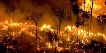 Amazônia: Ministro do Meio Ambiente diz que seca e calor ampliam queimadas